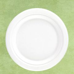"Bagasse Eco-Friendly Round Plate 10"" / 26cm"