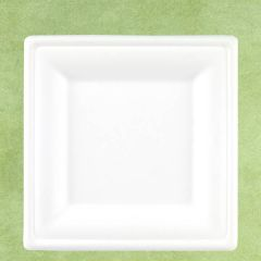 "Bagasse Eco-Friendly Square Plate 10"" / 26cm"