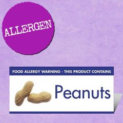 Food Allergen Buffet Notice Peanuts Warning 45x100mm