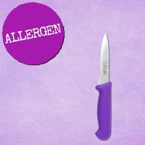 "[Challenge25] Purple Handled Serrated Knife 4"" / 10.5cm"