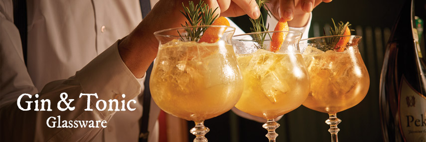 Gin & Tonic Glassware from Stephensons Catering Suppliers