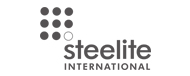 Steelite International China Crockery