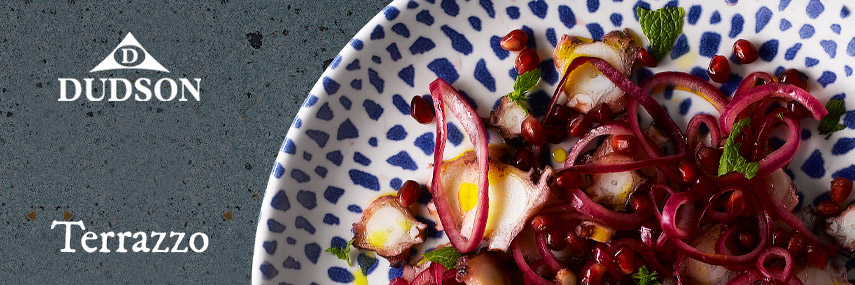 NEW Dudson Terrazzo Rustic Crockery from Stephensons Catering Suppliers